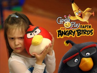 angry birds party.jpg